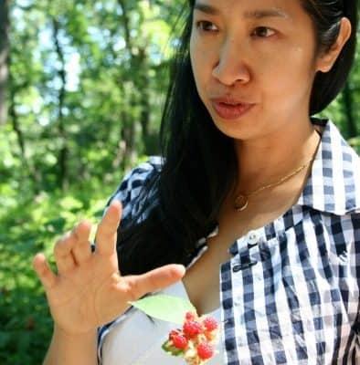 Ava Chin.wineberries