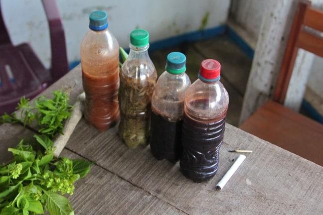 Ayuahuasca & Other Shamanic Tinctures