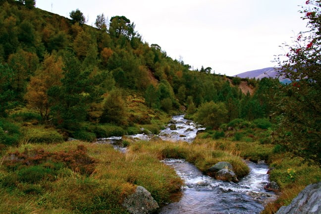 Cairngorm National Park, UK National PArks