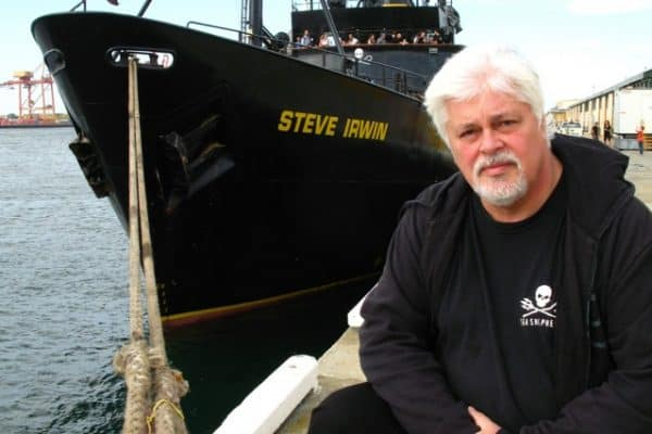 TRAVEL BLOGGERS GIVE BACK: Sea Shepherd Conservation Society Fights For Marine Life