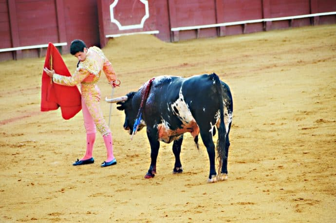 15 Harmful Traditions - Bullfight in Spain