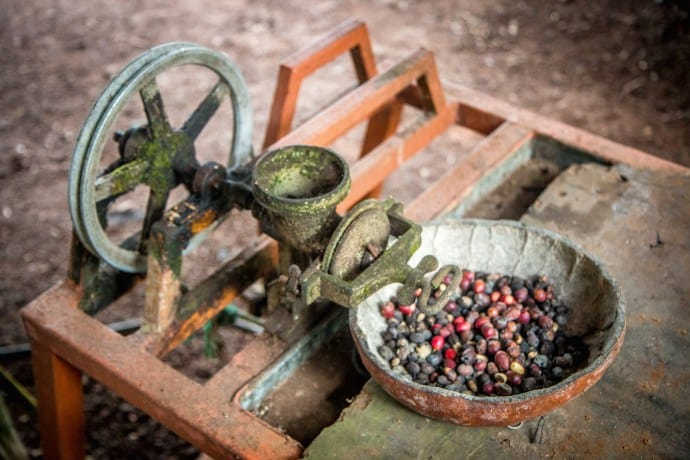 antique Coffee Grinder in the Galapagos Islands