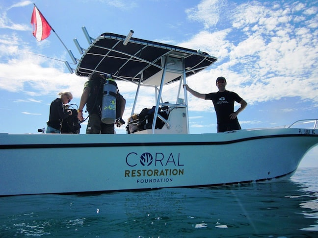 Coral Restoration Foundation Hosts Plantapalooza on World Oceans Day