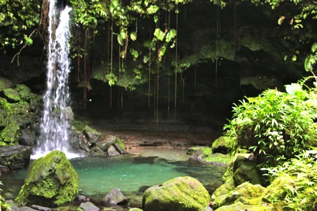 The Definition of Serenity: Alone at Emerald Pool, Dominica