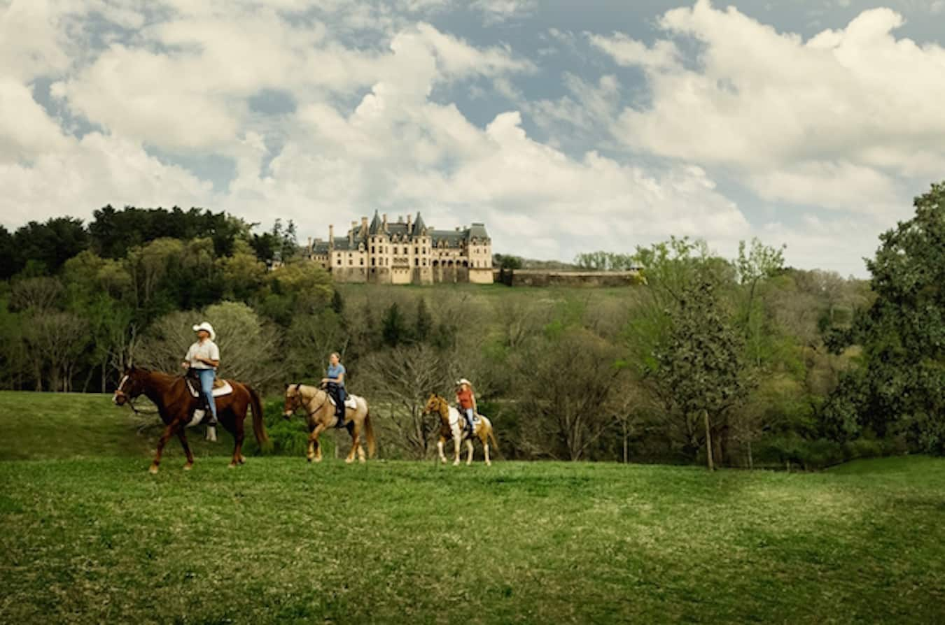 Horseback Riding in Asheville, photo courtesy Biltmore Estate