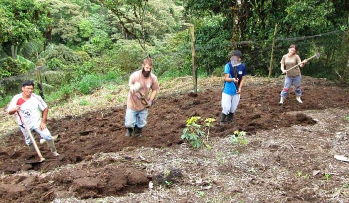 How to Volunteer -Gardening in Las Tolas