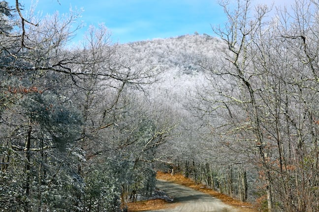 Winter in Pisgah National Forest, North Carolina