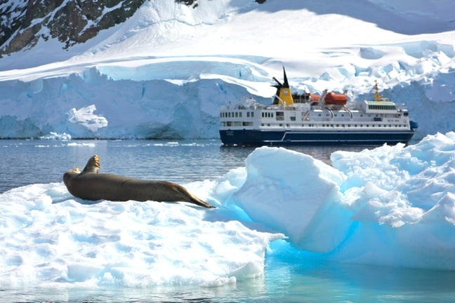 Antarctica Cruise Ship with Crabeater Seal on an Iceberg