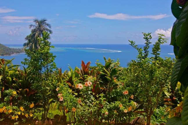 Moorea Tropical Garden, Tahiti