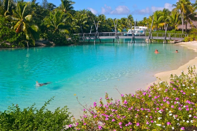 Four-Seasons-Bora-Bora-Ruahatu-Lagoon-Sanctuary