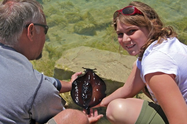Alex Love Rescues a Sea Hare in Bermuda