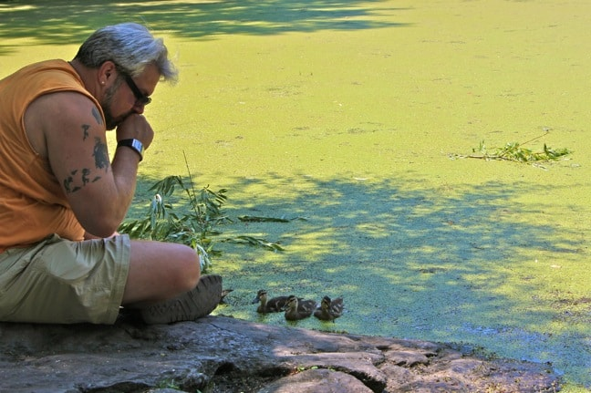 Turtle_Pond_Central_Park