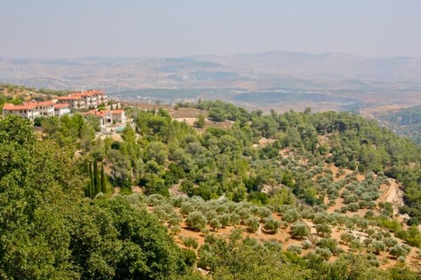 JORDAN Nature Reserves: Ajloun, Dibeen & Azraq
