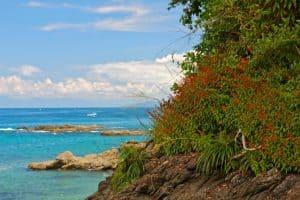 Ecotourism in Costa Rica- Caño Island Biological Reserve Beach, Costa Rica