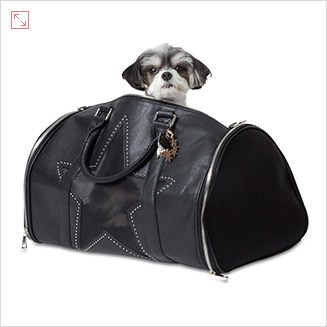 Travel Essentials: Lazybonezz super star pet carrier