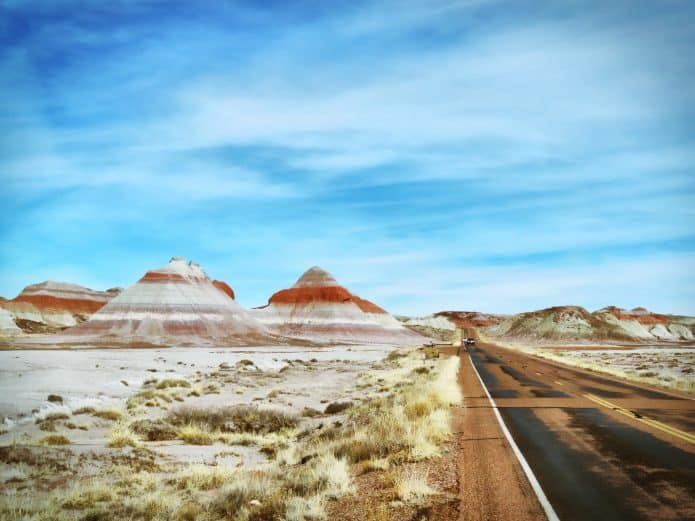 List of National Parks, A Complete Guide -Petrified Forest National Park