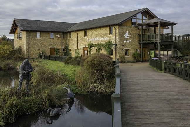 London_Wetland_Centre_Building_David_Iliff