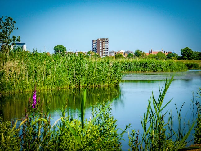 South London Seen From London Wetland Centre