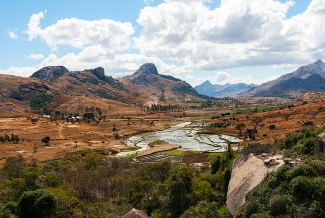 Madagascar King Julien Rice Paddy View
