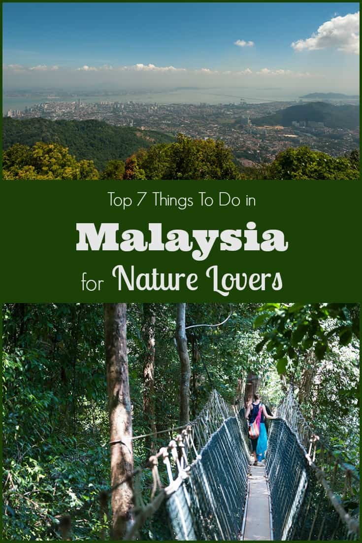 Things to do in Malaysia for Nature Lovers