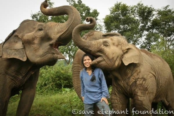 Lek Chaibert, the Elephant Whisperer of Elephant Nature Park