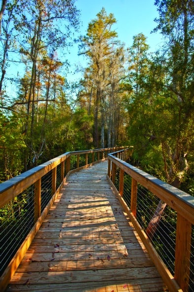 Panama City Beach Conservation Park