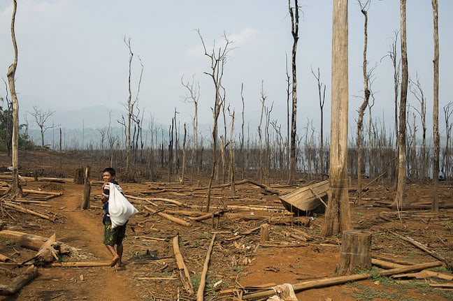 Palm Oil Devastation of Myanmar's Kan Par Ni Village