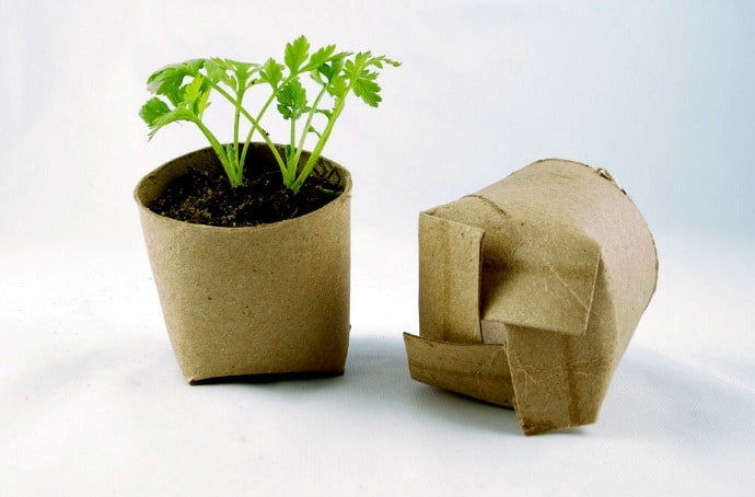 Permaculture Garden Guide - Toilet Paper Seedlings