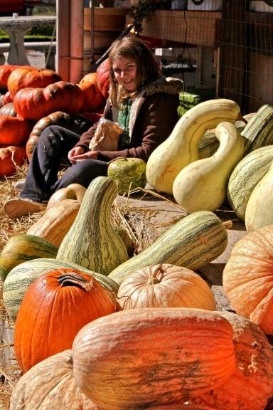 Autumn activities Atlanta Pumpkins