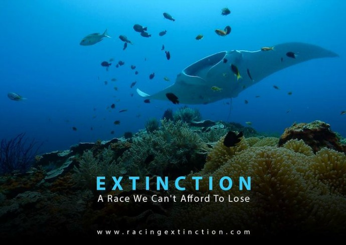 Louie Psihoyos directs Racing Extinction