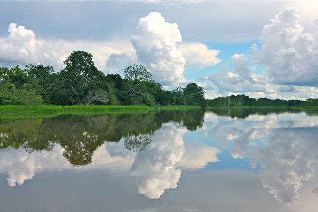 Reflection in the Yatapa River Peruvian Amazon
