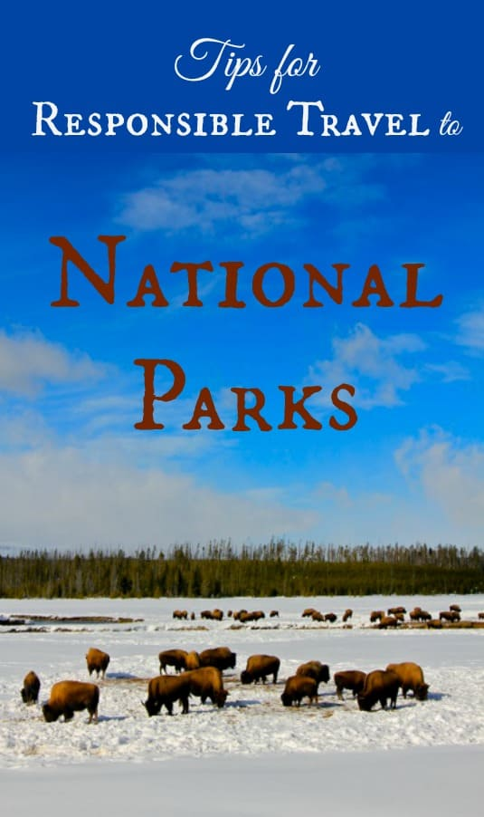 Tips for Responsible Travel to National Parks