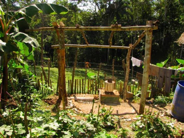Permaculture Design Principles (12 Steps to a More ...