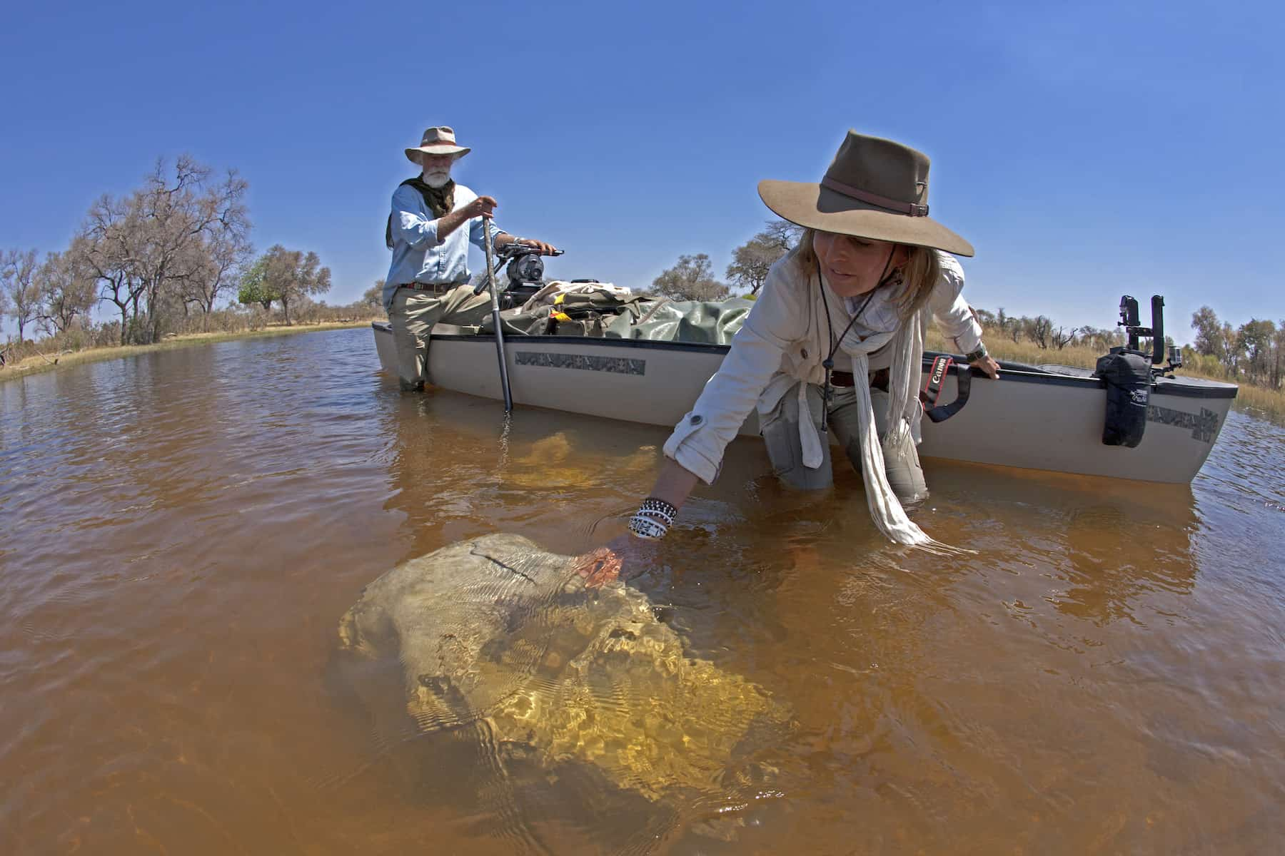 Wildlife filmmakers Dereck and Beverly Joubert investigate a submerged elephant skull in Botswana.