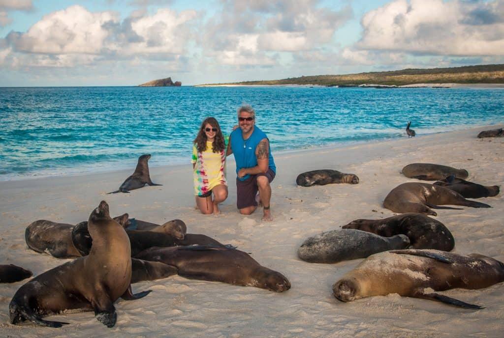 Galapagos Islands Animals: Galapagos Sea Lions