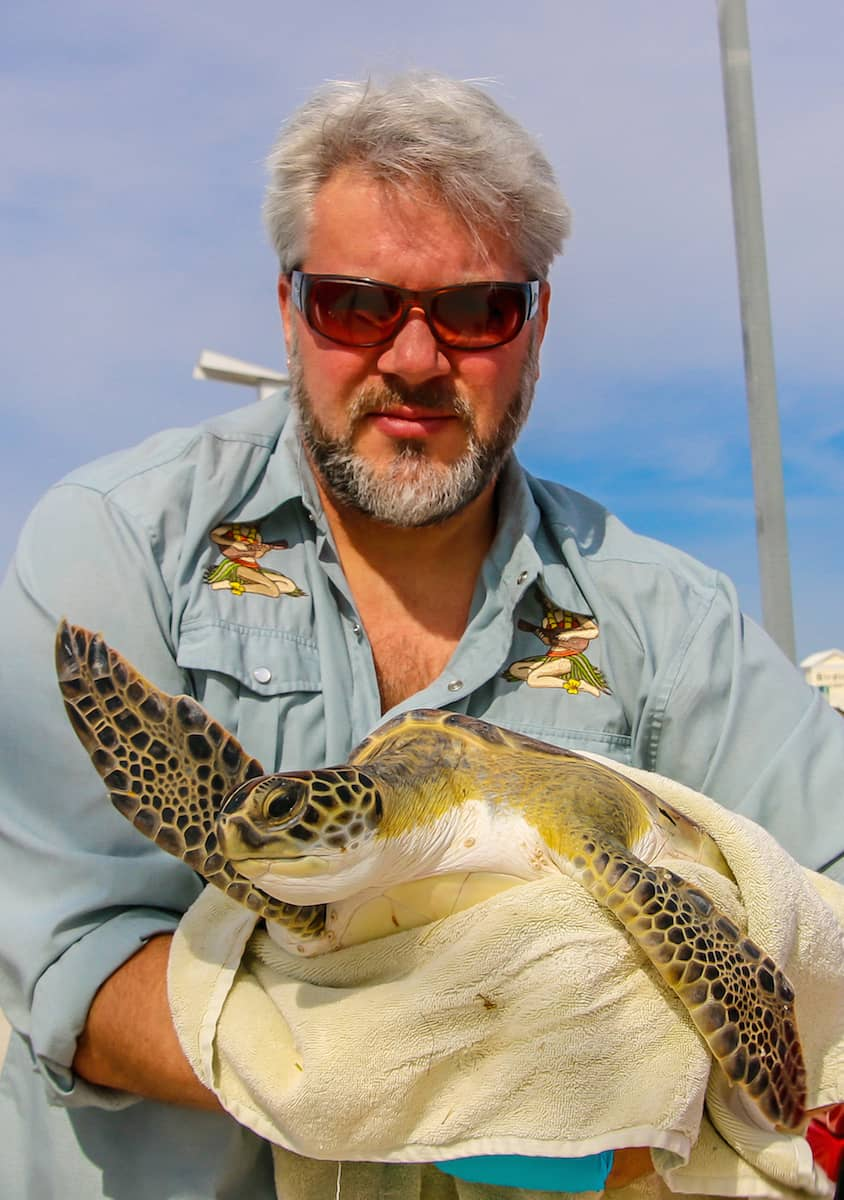 Sea Turtle Inc rescues injured sea turtle in Port Isabel, Texas.