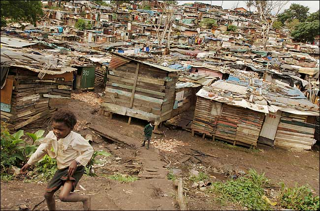 Shanties Near Durban