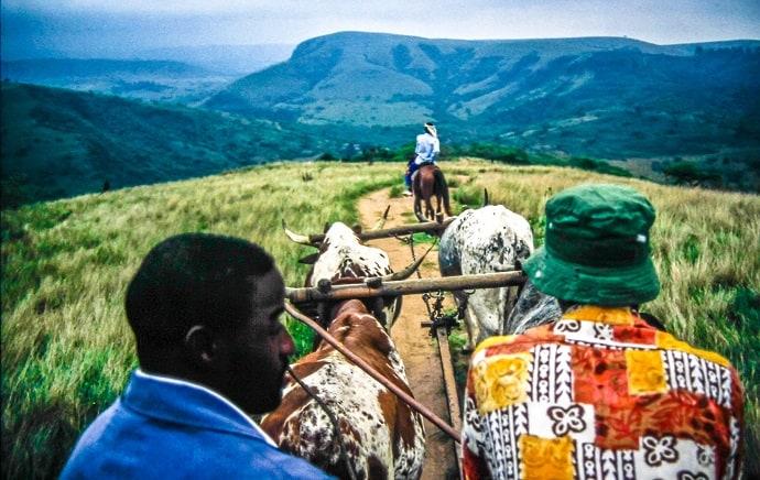 The Road to Simunye Zulu Village