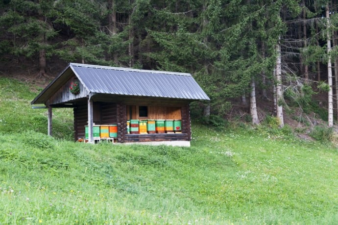 Organic Beekeeping Hut in Jerzersko Valley