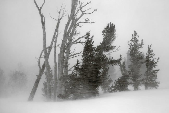 Snowstorm from near Clark Lakes, Ansel Adams Wilderness, California.
