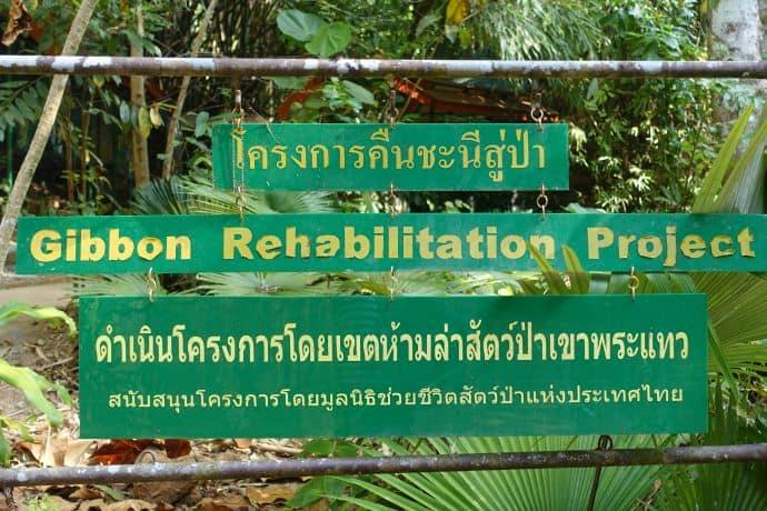 The Gibbon Rehabilitation Project Centre entrance