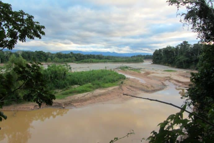 Things to do in Bolivia: Explore the Amazon in Madidi National Park
