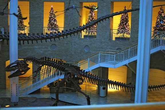 Winter Wonderland Fernbank Museum