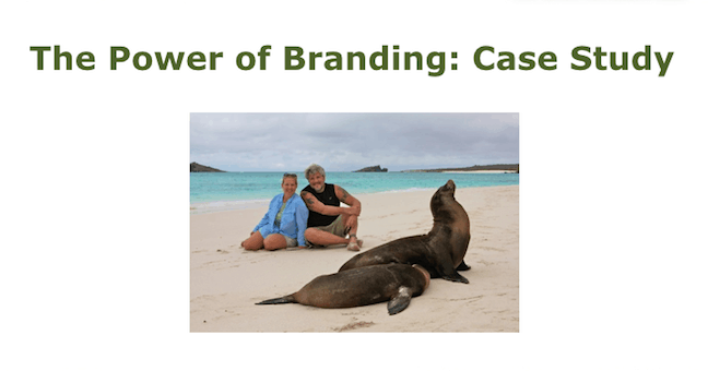 Blog Branding Case Study for Green Global Travel