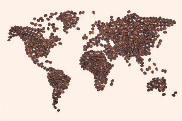 Best Coffee In the World: A Gourmet's Guide