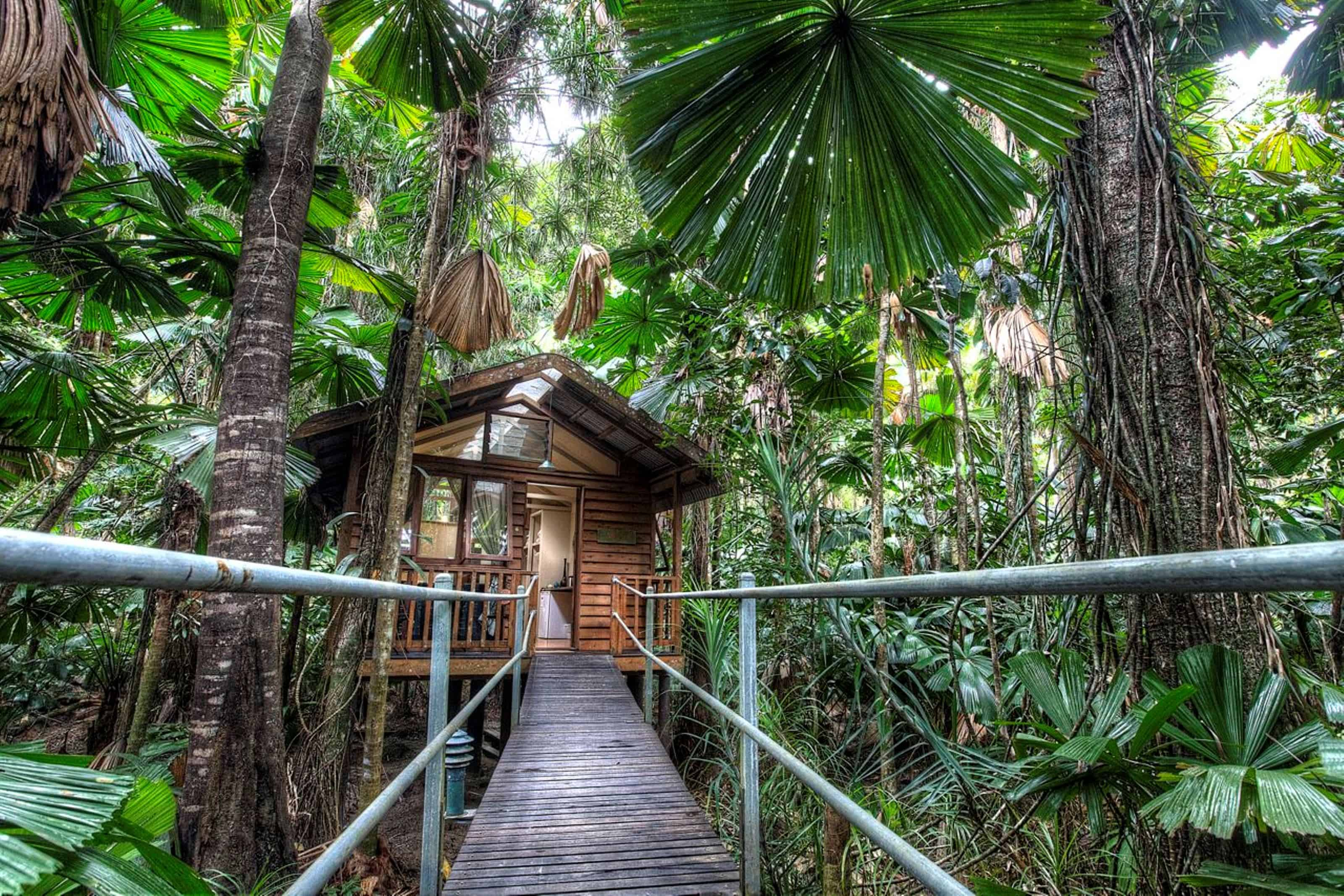daintree wilderness eco lodge, australia