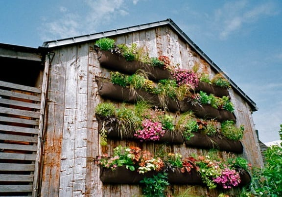 Do It Yourself Vertical Garden
