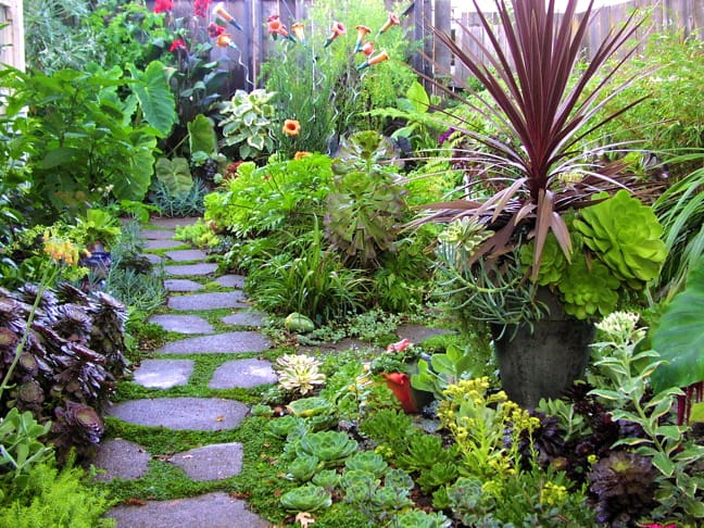 Eco Friendly Gardening For Spring