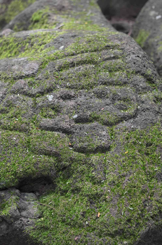 Isla de Ometepe Nicaragua- Petroglyphs