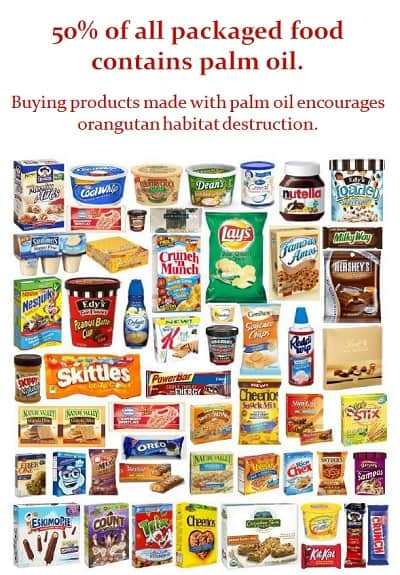 50% of all packaged food contains palm oil.